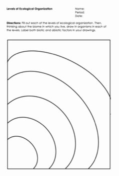 Levels Of Ecological organization Worksheet New Levels Of Ecological organization Worksheet by Science