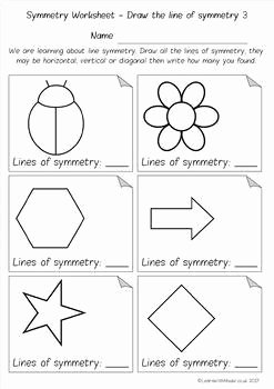 Line Of Symmetry Worksheet Awesome Symmetry Drawing Lines Count the Lines Finish the
