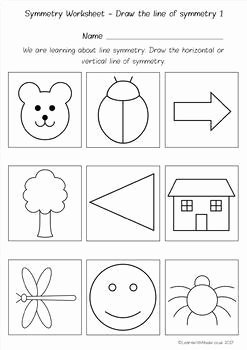 Line Of Symmetry Worksheet Best Of Symmetry Drawing Lines Count the Lines Finish the