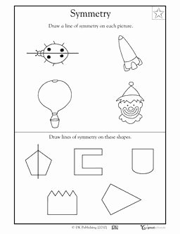 Line Of Symmetry Worksheet Lovely 7 Best Images About Lines Of Symmetry On Pinterest