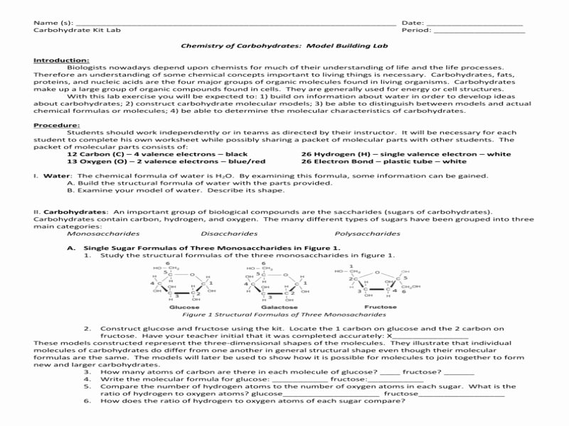 Lipids Worksheet Answer Key Unique Chemical Carbohydrate Model Lab Free Printable Worksheets