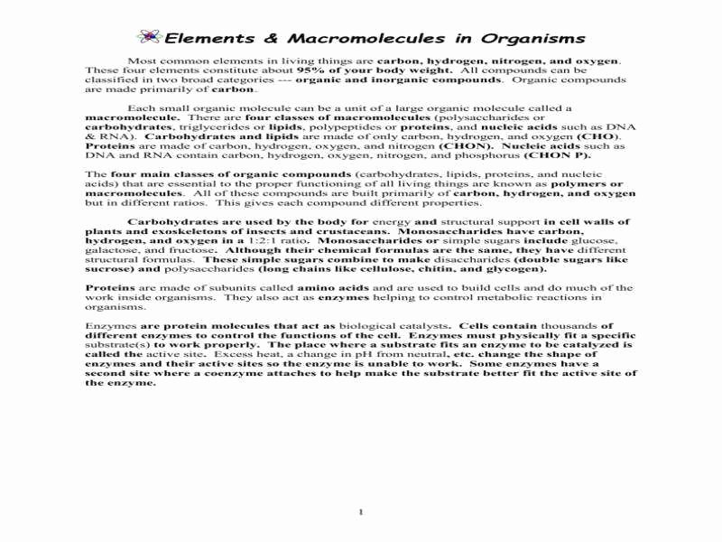 Macromolecules Worksheet #2 Answers Beautiful Macromolecules Worksheet
