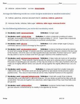 Macromolecules Worksheet #2 Answers Fresh Macromolecule Worksheet with Answer Key by Gigi S