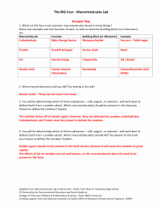 Macromolecules Worksheet #2 Answers Inspirational 2 What are Macromolecules