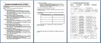 Macromolecules Worksheet Answer Key Inspirational Building Macromolecules Lab Activity Notes and Review