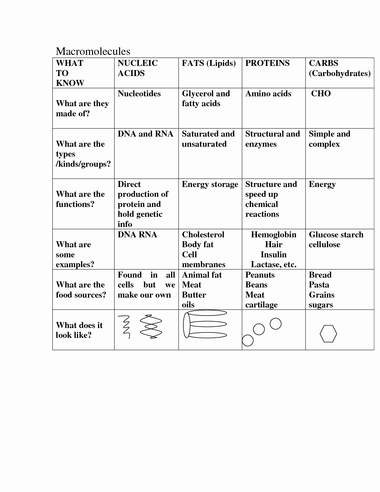 Macromolecules Worksheet High School Lovely 16 Best Of Carbohydrate Review Worksheet