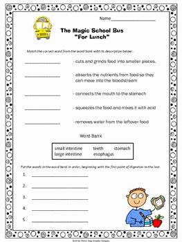 "Magic School Bus Worksheet Fresh Digestion Magic School Bus ""for Lunch"" Video Response"