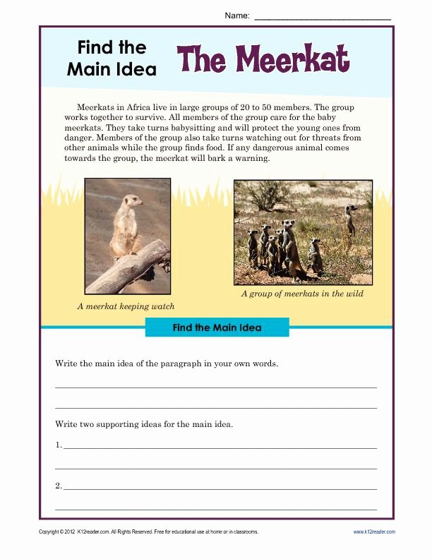 Main Idea Worksheet 2nd Grade Unique 3rd or 4th Grade Main Idea Worksheet About the Meerkat