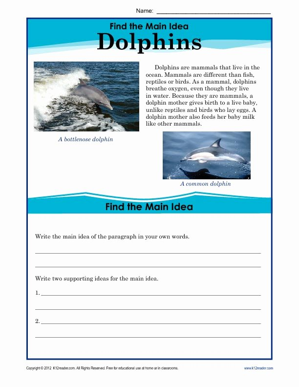 Main Idea Worksheet 5 Inspirational 5th Grade Main Idea Worksheet About Dolphins