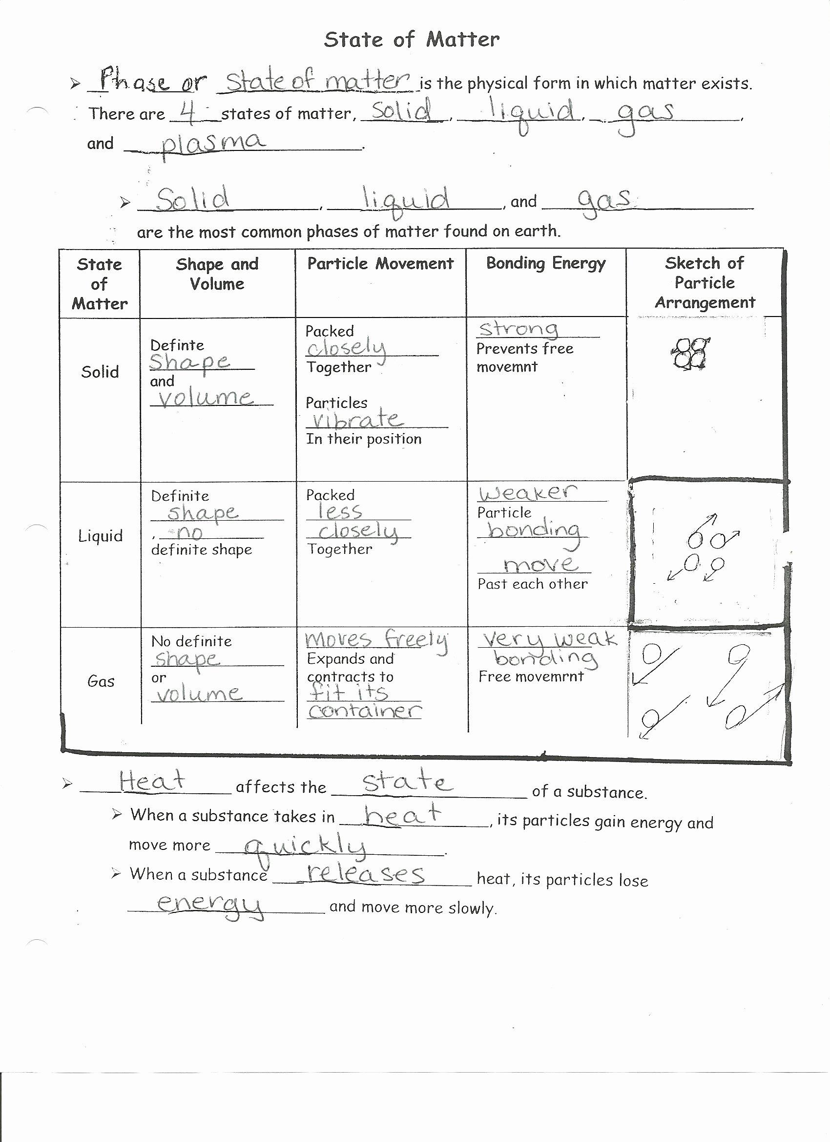 Matter and Energy Worksheet Lovely Worksheet States Matter Worksheets Grass Fedjp