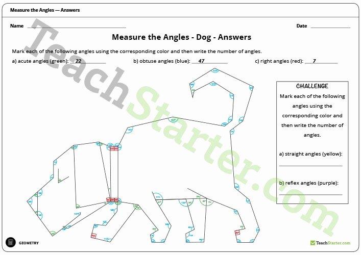 Measuring Angles Worksheet Pdf Inspirational Measure the Angles Worksheet Dog Teaching Resource