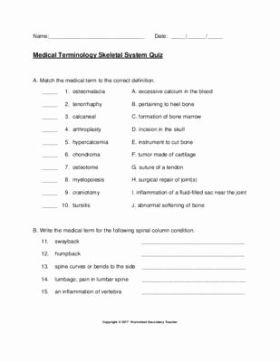 Medical Terminology Prefixes Worksheet Awesome Medical Terminology Skeletal System Quiz with Key