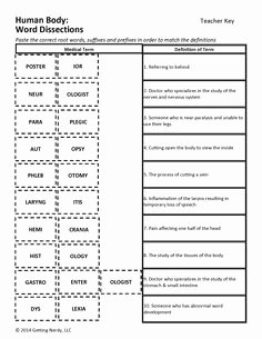 Medical Terminology Prefixes Worksheet Beautiful Printable Medical Terminology Crossword Puzzles