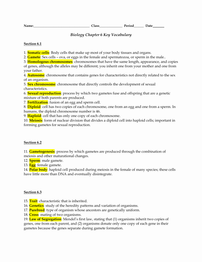 50 Meiosis Worksheet Vocabulary Answers   Chessmuseum ...