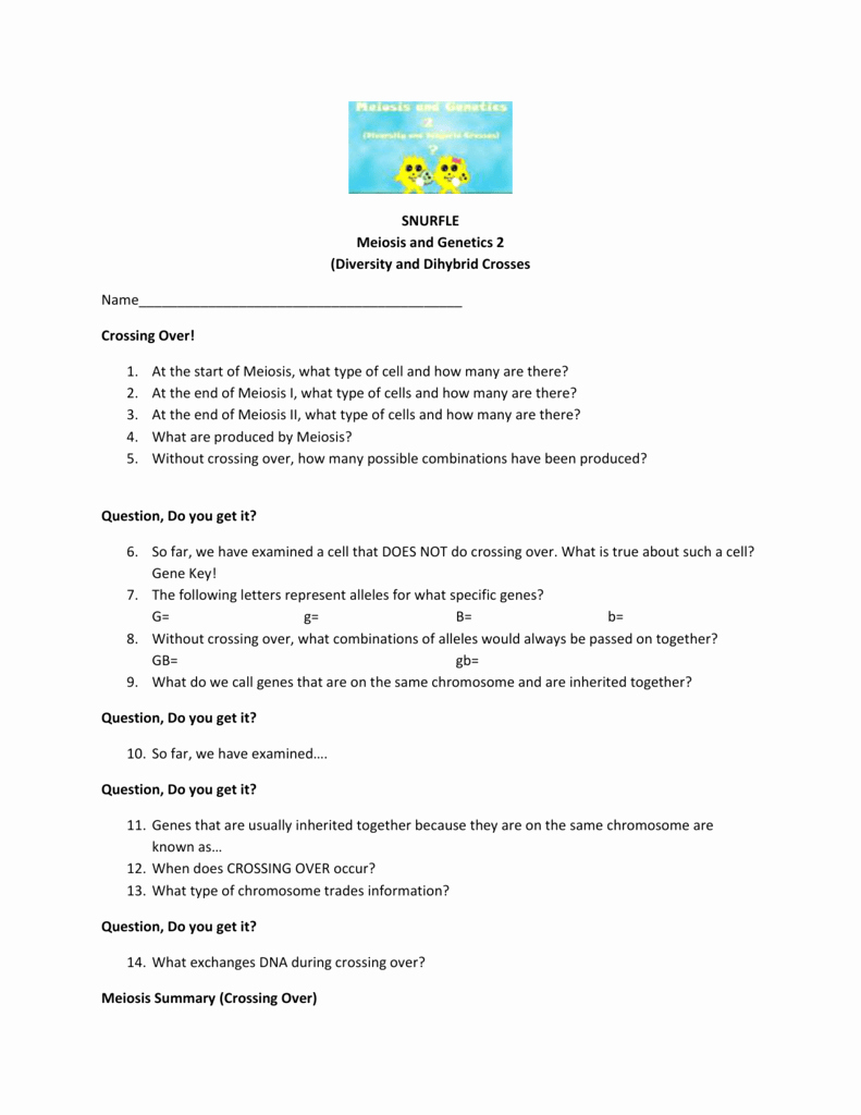 Meiosis Worksheet Vocabulary Answers Unique Worksheet Meiosis Vocabulary Worksheet Grass Fedjp