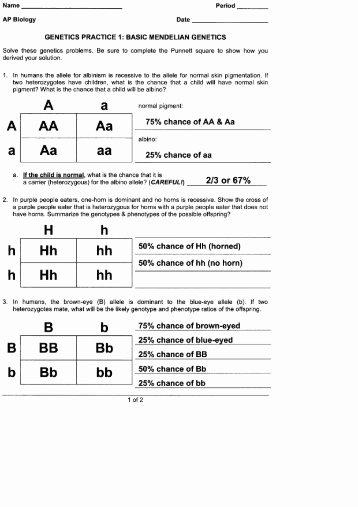 Mendelian Genetics Worksheet Answer Key Beautiful Genetics Practice Problems Worksheet Key Ppt