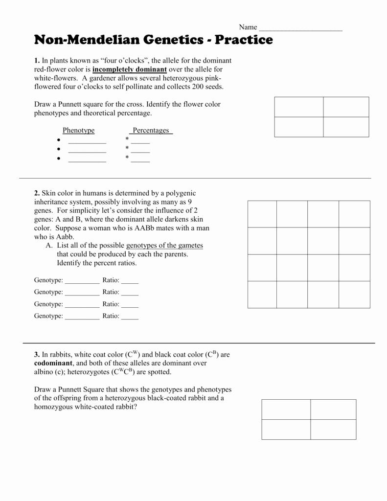 Mendelian Genetics Worksheet Answer Key Inspirational Mendelian Genetics Worksheet Answer Key