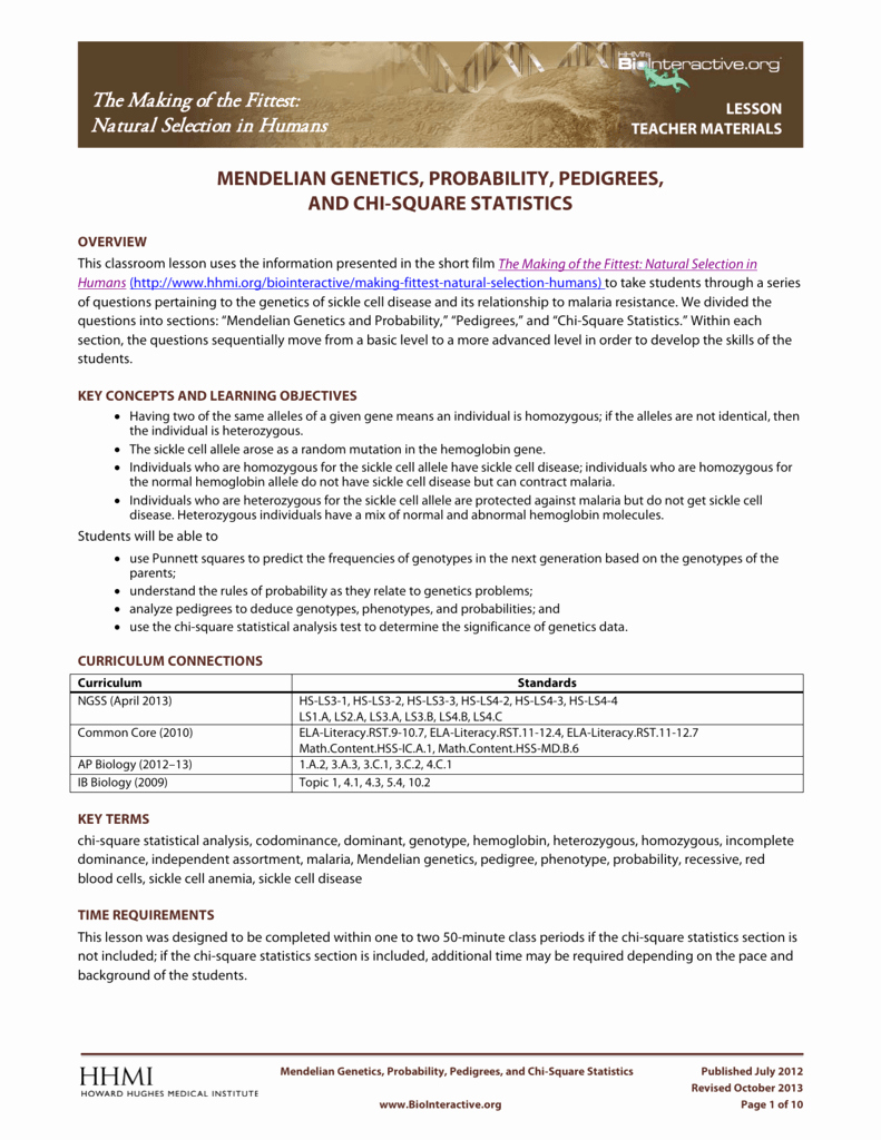 Mendelian Genetics Worksheet Answers Best Of Mendelian Genetics Worksheet Answer Key