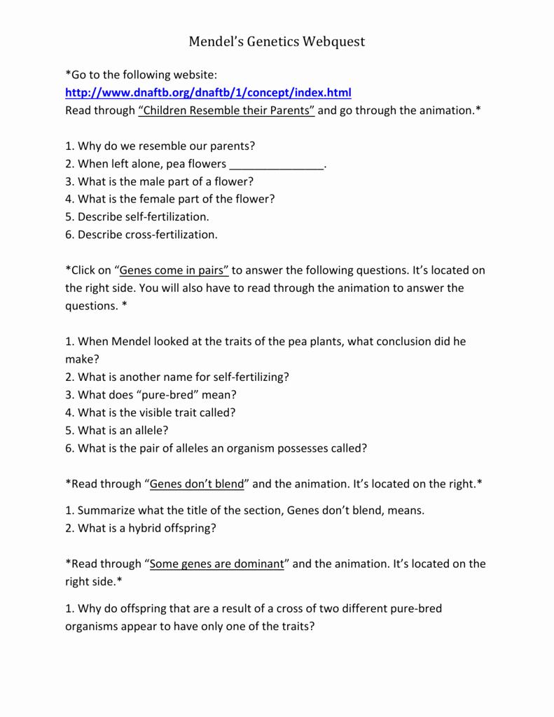 Mendelian Genetics Worksheet Answers Best Of Mendelian Genetics Worksheet Answer Key