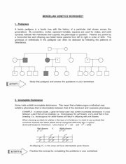 MENDELIAN GENETICS WORKSHEET
