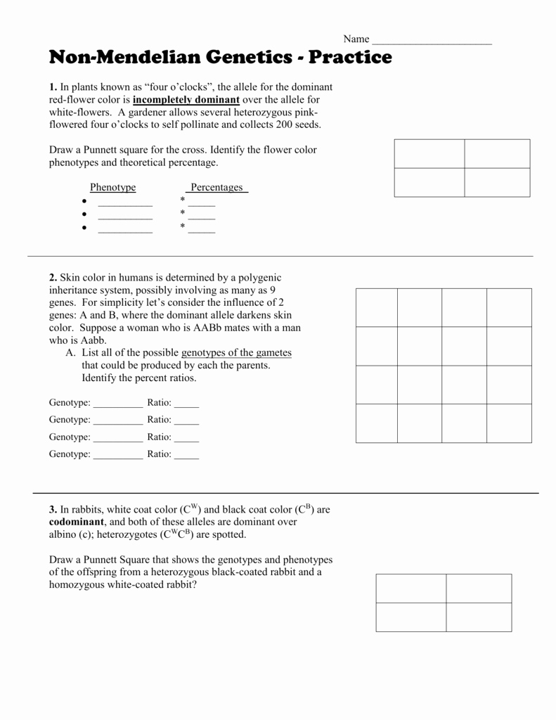 Mendelian Genetics Worksheet Answers Unique Mendelian Genetics Worksheet Answer Key