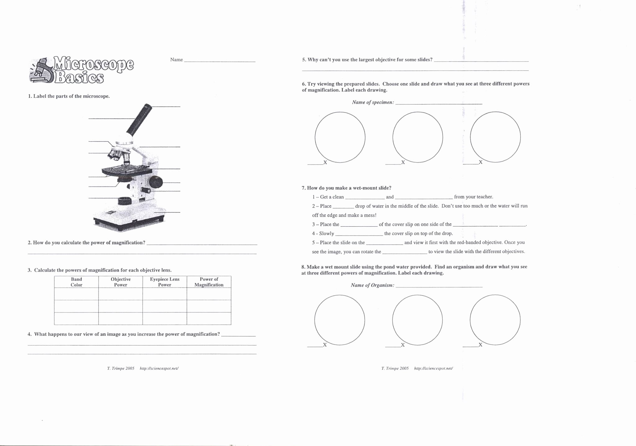 Microscope Parts and Use Worksheet Elegant Using A Microscope Worksheet