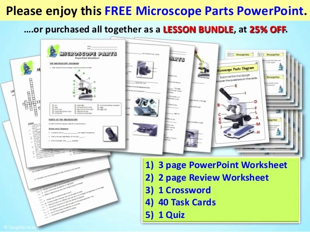 Microscope Parts and Use Worksheet Lovely Microscope Parts Power Point