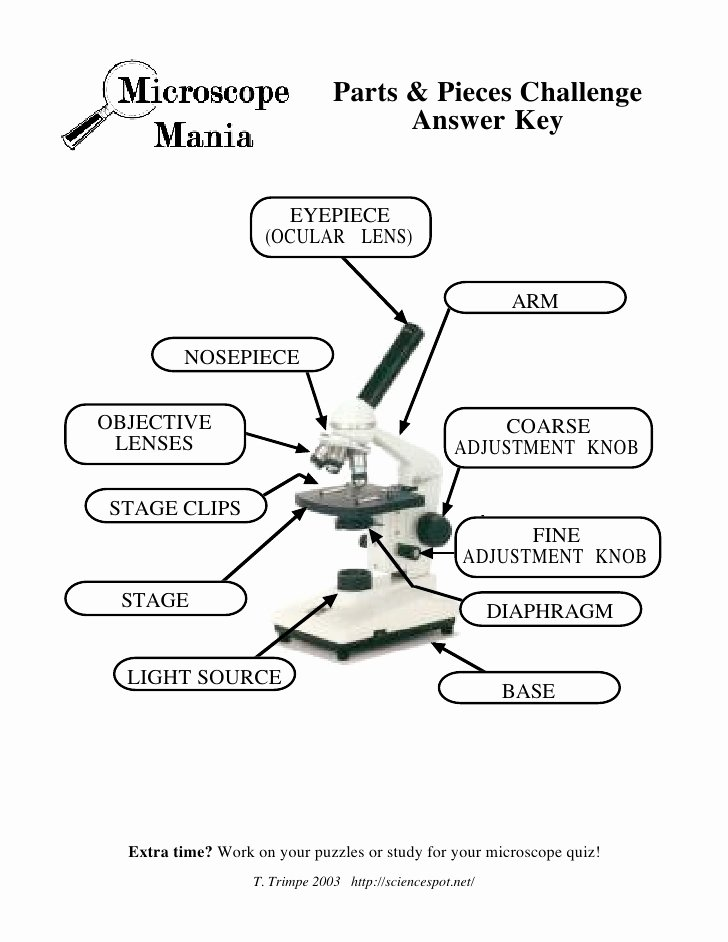 Microscope Parts and Use Worksheet Luxury Microscope Mania Micro Review Act
