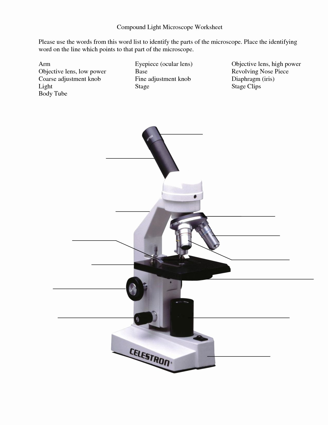 Microscope Parts and Use Worksheet Unique Microscope Parts and Use Worksheet Answer Key