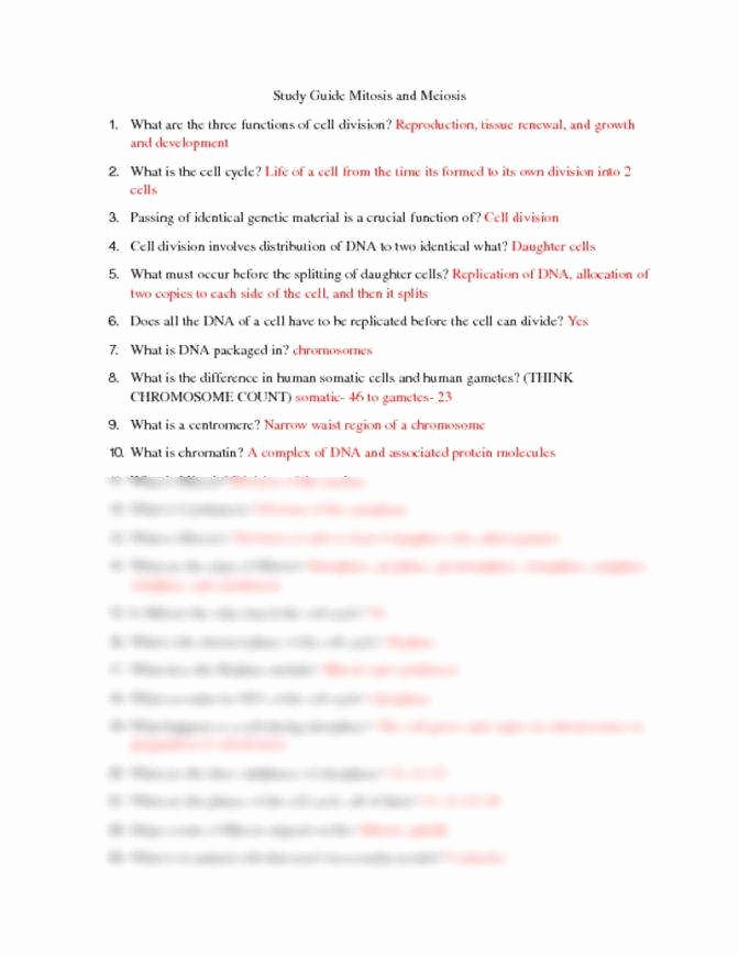 Mitosis Vs Meiosis Worksheet Answers Awesome Mitosis Vs Meiosis Worksheet Answers