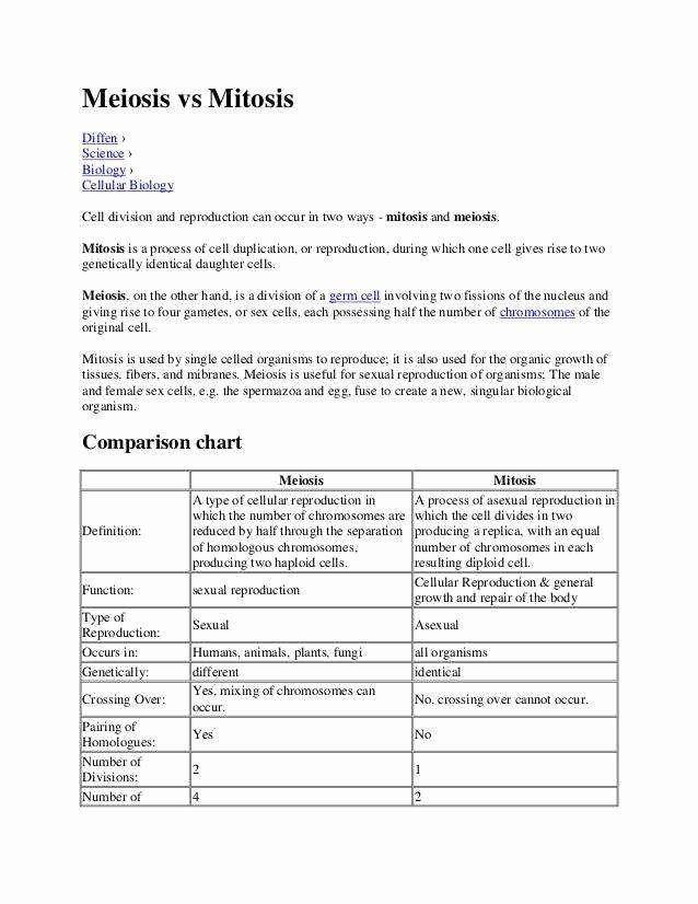 Mitosis Vs Meiosis Worksheet Answers Inspirational Mitosis Versus Meiosis Worksheet Answers