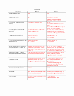 Mitosis Vs Meiosis Worksheet Answers Lovely Mitosis Vs Meiosis Chart