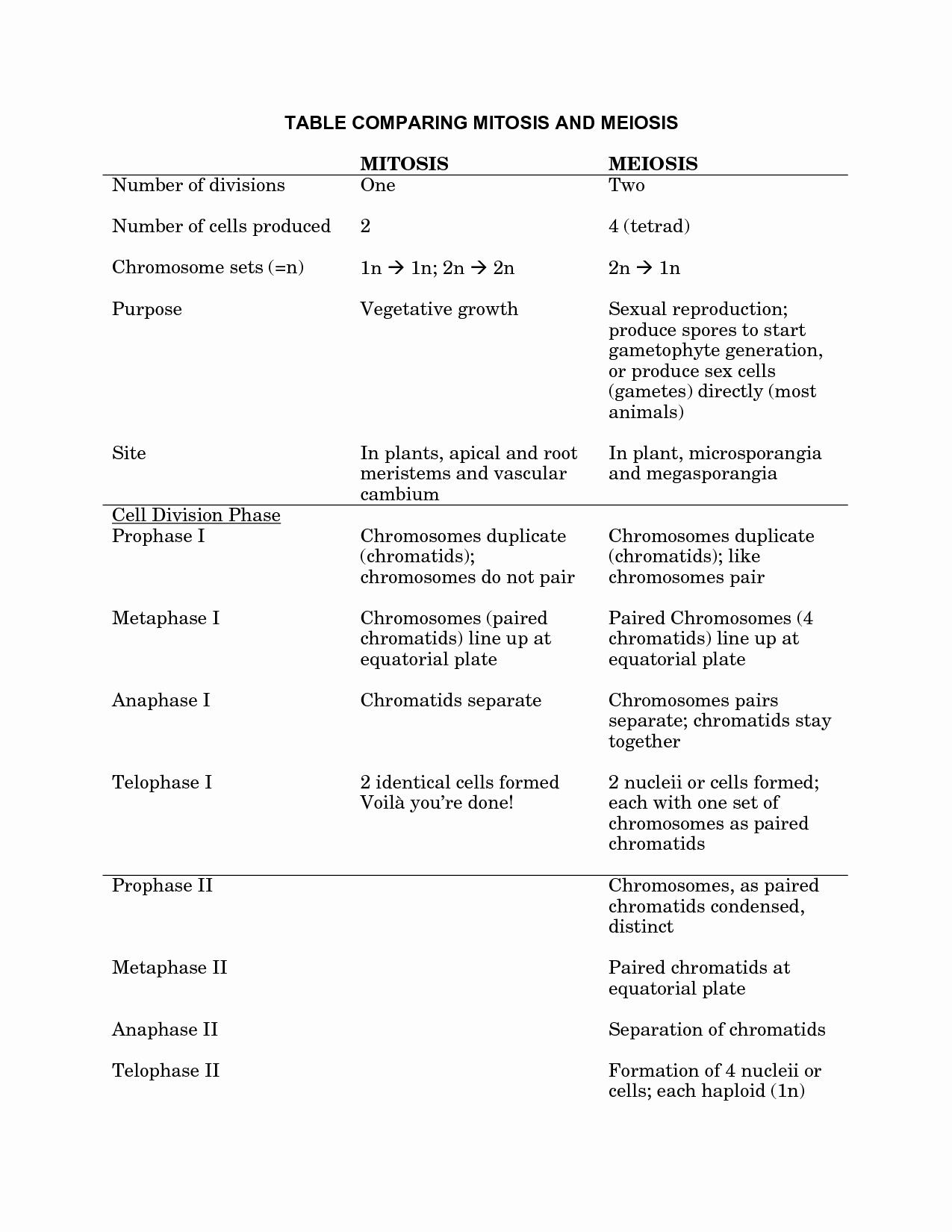 Mitosis Vs Meiosis Worksheet Answers Luxury Meiosis Vs Mitosis Worksheet and Answers