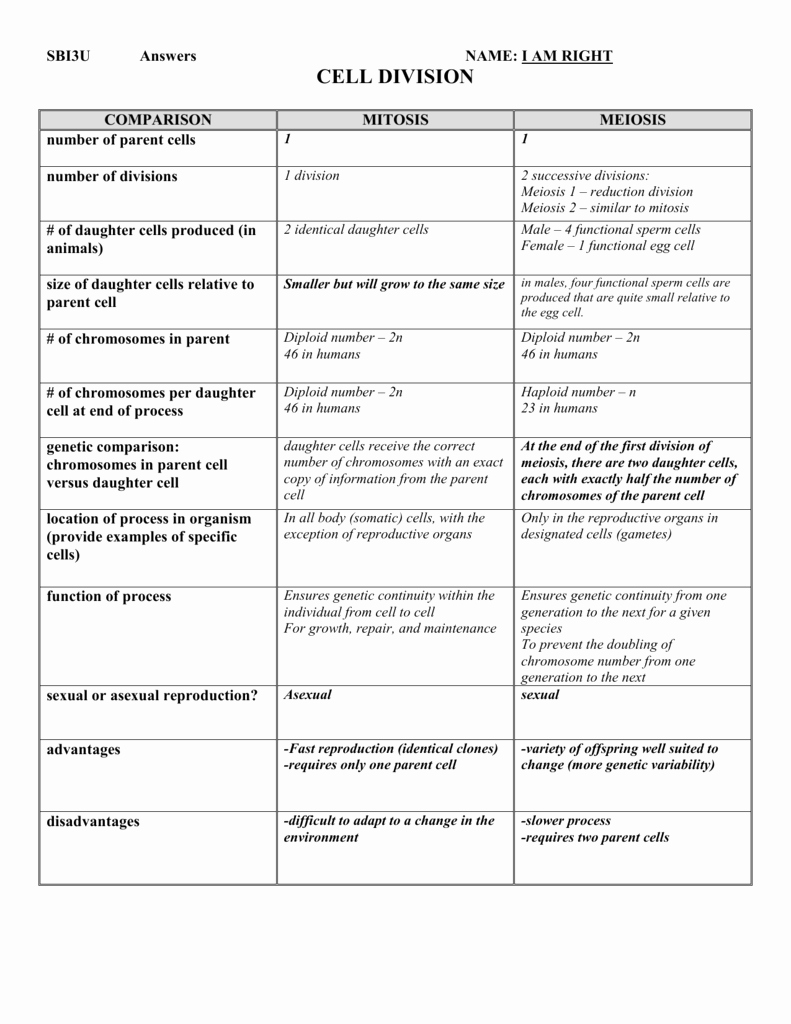 Mitosis Vs Meiosis Worksheet Answers Unique Worksheet Paring Mitosis and Meiosis Worksheet Answers