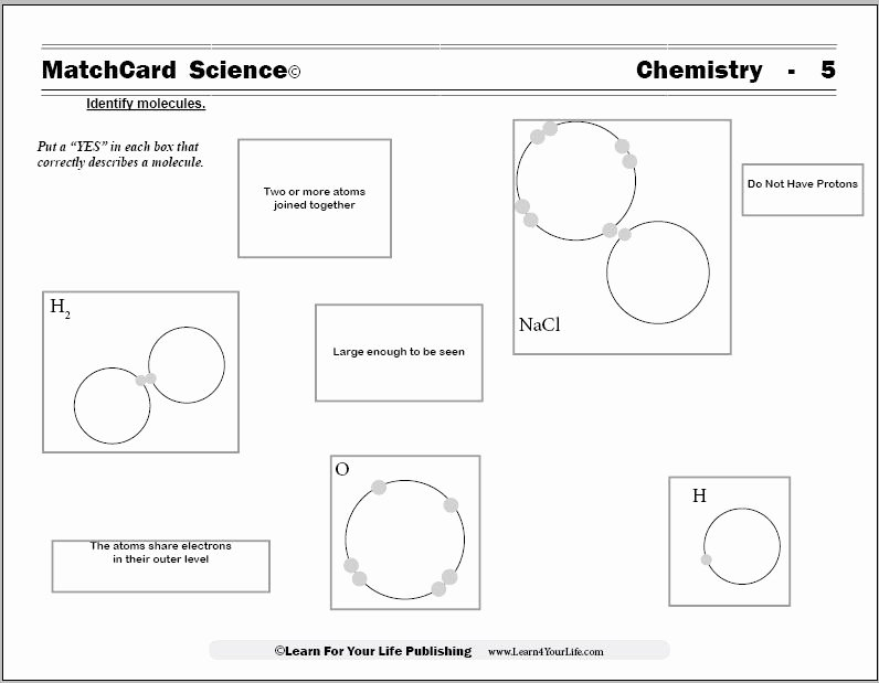 Molecules and Compounds Worksheet Inspirational Molecule Worksheets