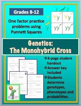 Monohybrid Cross Practice Problems Worksheet Awesome Monohybrid Cross Punnett Square Worksheet