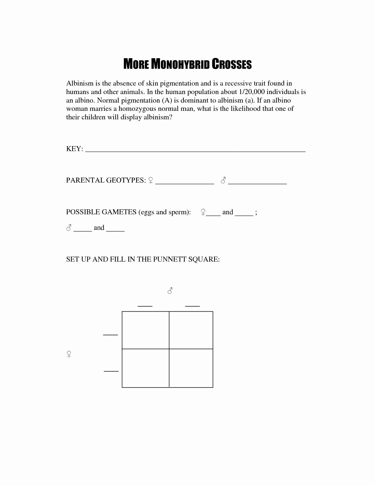 Monohybrid Cross Practice Problems Worksheet Beautiful 14 Best Of Monohybrid Cross Worksheet Answer Key