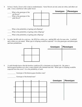 Monohybrid Cross Practice Problems Worksheet Beautiful Genetics and Worksheets On Pinterest