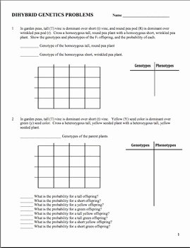 Monohybrid Cross Practice Problems Worksheet Best Of Genetics Dihybrid Cross Worksheet by Amy Brown Science