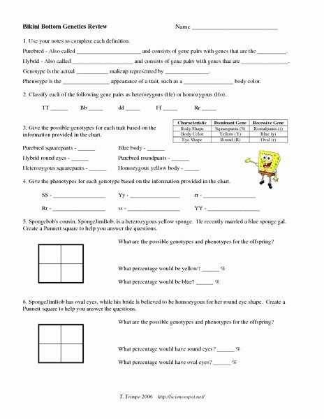 Monohybrid Cross Practice Problems Worksheet Best Of Printables Genetics Worksheet Tempojs Thousands Of
