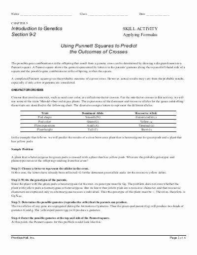Monohybrid Cross Practice Problems Worksheet Inspirational Monohybrid Cross Worksheet
