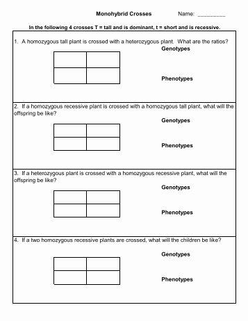 Monohybrid Cross Practice Problems Worksheet Inspirational Monohybrid Crosses and the Punnett Square Lesson Plan