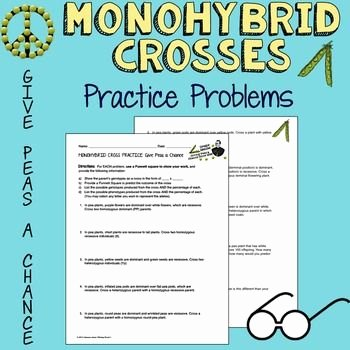 Monohybrid Cross Practice Problems Worksheet Lovely Freebie Monohybrid Cross Practice Problems Give Peas A