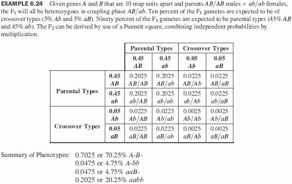 Monohybrid Cross Practice Problems Worksheet Lovely Punnett Square Worksheets