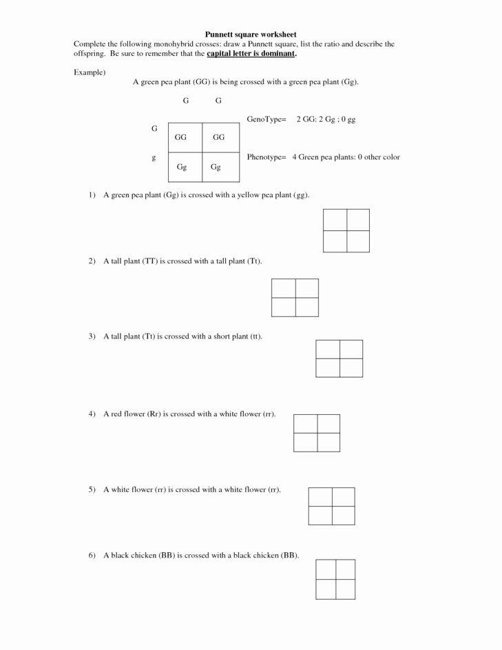 Monohybrid Cross Practice Problems Worksheet Luxury Genetics Problems Worksheet