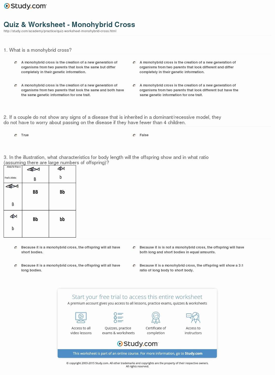 Monohybrid Cross Practice Problems Worksheet New Monohybrid Cross Worksheet