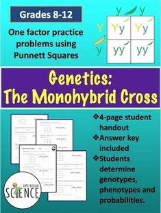 Monohybrid Cross Practice Problems Worksheet New Worksheets and Genetics On Pinterest