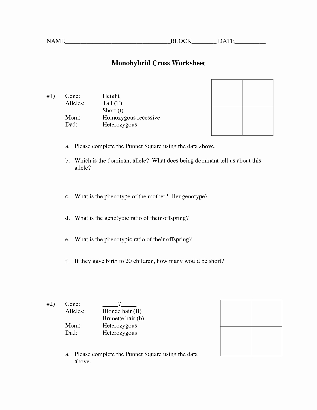 Monohybrid Cross Worksheet Answers Luxury Monohybrid Cross Worksheet Part D