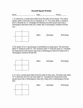 Monohybrid Cross Worksheet Answers Unique Monohybrid Cross Practice Problems by Goby S Lessons