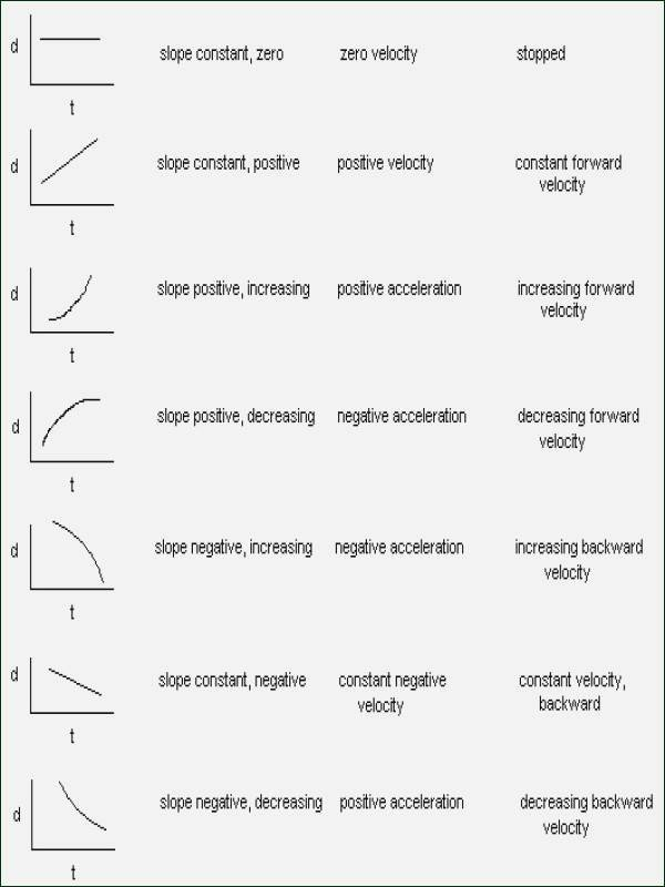 Motion Graphs Physics Worksheet Luxury Projectile Motion Worksheet Answers